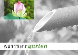 Wuhrmann-MiniAdd